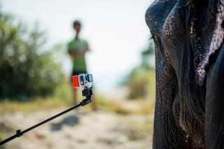 1549892890730-Elephant-Tourism-Nepal-11-of-13