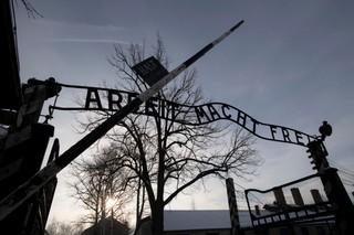 Afd Nazi history