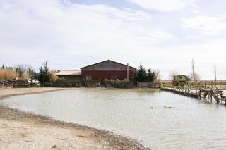1551179401814-02-Ferme-de-Bernard-Maison-ecologique-auto-construite-et-lac-artificiel-fait-par-B