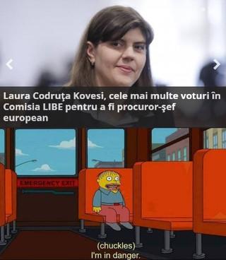 1551561825179-Alex-Popescu-meme-Laura-Codruta-Kovesi