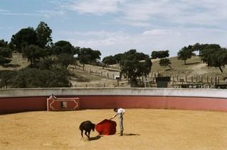 Kevin de Luis, bullfighter.