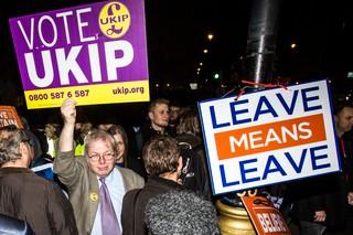 brexit ukip voter