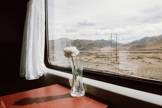 1554303538609-Travelling-by-Train-across-Asia80-Trains_Marc-Sethi-0489