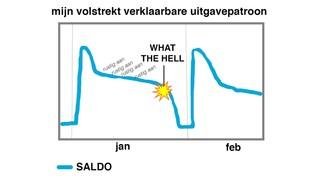 Grafiek mijn volstrekt verklaarbare uitgavepatroon - januari, februari