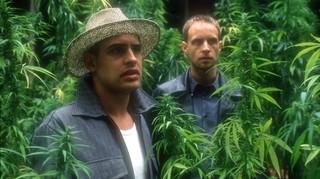 2 mannen in oerwoud