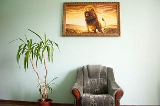 Stoel, plant en schilderij leeuw