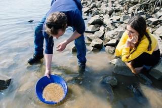 Bas scheidt het goud van het zand