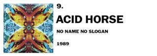 1554989868443-9-acid-horse