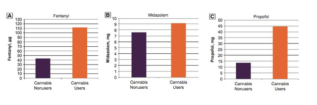 Cannabis Users Might Need More Anesthesia in Medical