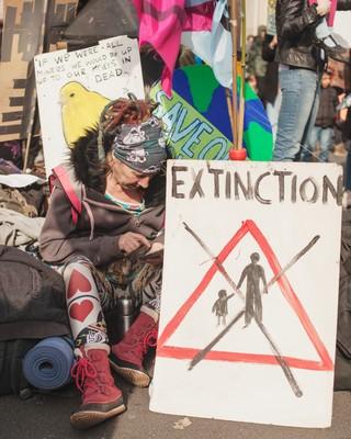 1555352591219-ChrisBethell_extinction-39