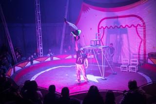 1557158045718-Sophie-Rodriguez-Cirque-13