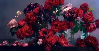 1557740862130-alexander-mcqueen-nick-knight-tribute-flowers