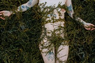 1558034611837-seaweed-huldufolk-2019