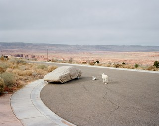 These Photos Depict the Bizarre, Eerie Beauty of the All-American Road Trip