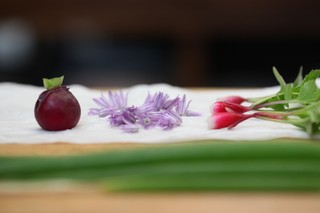 freshly picked radishes and chive blossoms on a paper towel in the munchies test kitchen