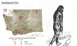 1559766380581-BIGFOOT