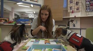 Έλενα Παλάγκα - Εκπαιδευτρια σκύλων