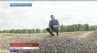 A reporter with Russia's Channel One crouches next to a field of flies.