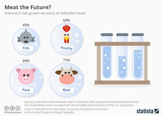 clean meat statistics