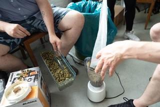 Cannabis in einem Saftmixer