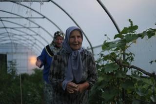 1562668586184-11-Refija-Hadzibulic-i-Nura-Mustafic-u-selu-Bajramovice-nedaleko-od-Srebrenice-u-svom-plasteniku-koji-su-dobile-kao-donaciju