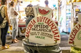 raccolta differenziata cocomero roma capitale