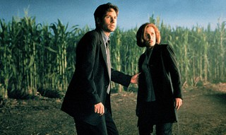 Mulder and Scully in a cornfield
