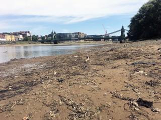 1564500425090-wet-wipes-flushable-river10