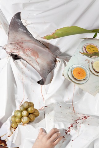 1565360044369-Still-Life-with-Rayfish