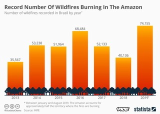 1566554222991-20190823_Amazon_Wildfires_VICE
