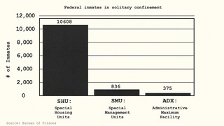 Federal inmates in solitary confinement