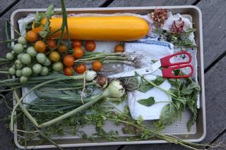 1566941179428-chef-sang-yoon-vegetables-munchies-test-kitchen-garden