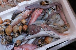 pesce-da-brodetto