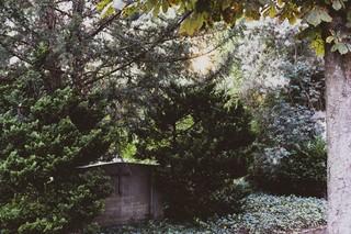 Beerdigung in Zürich Grabstein im Friedhof Sihlfeld