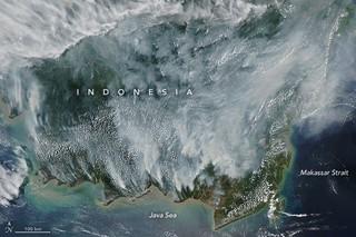 1568907581530-indonesia_amo_2019257