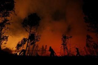 1568908564263-pemadaman-api
