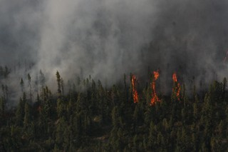 One of 28 wildfires in July 2017.