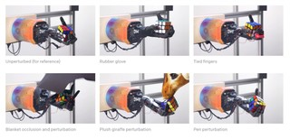 Watch This Humanoid Robot Hand Solve a Rubik's Cube