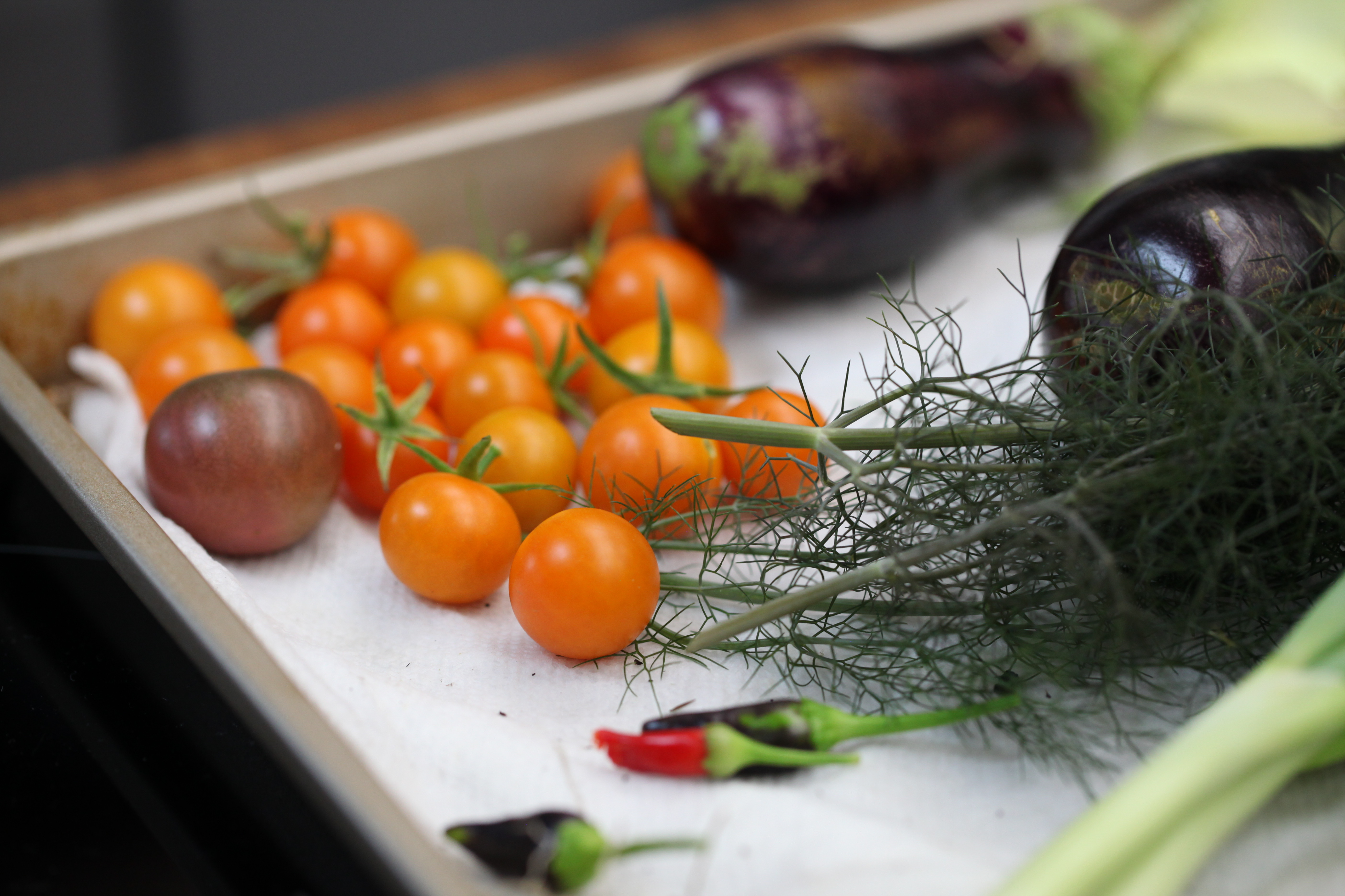 1573163531023-IMG_5475-vegetables-from-munchies-rooftop-garden-tomatoes