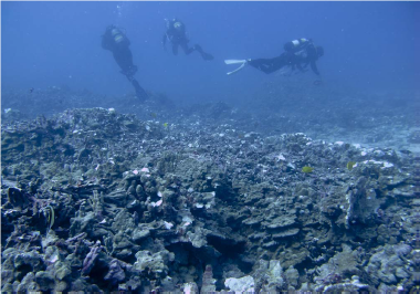 Divers from the Department of Aquatic Resources survey the damage in 2018. Photo courtesy of the Department of Land and Natural Resources of
