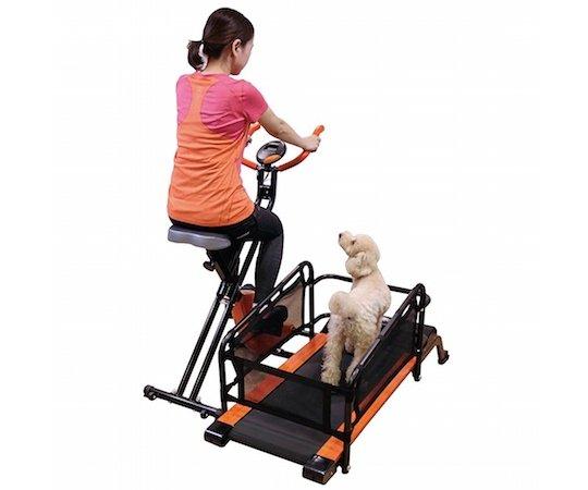 dog exercise bike.jpg