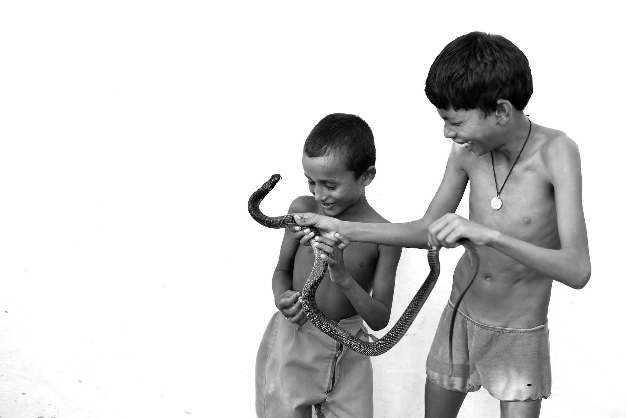 Tinerii imblanzitori de serpi din India