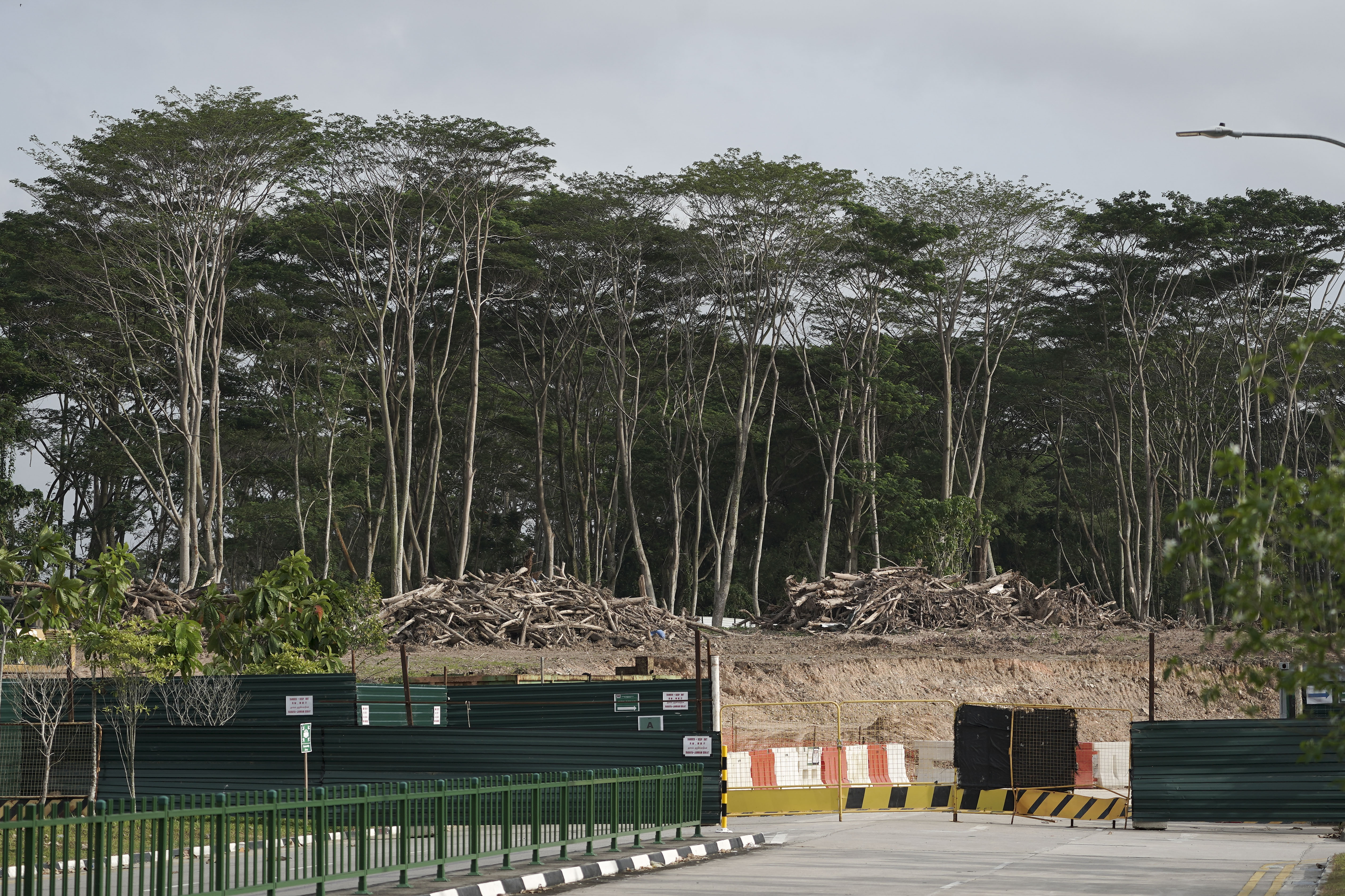 Part of the forest in Kranji is now a construction site.