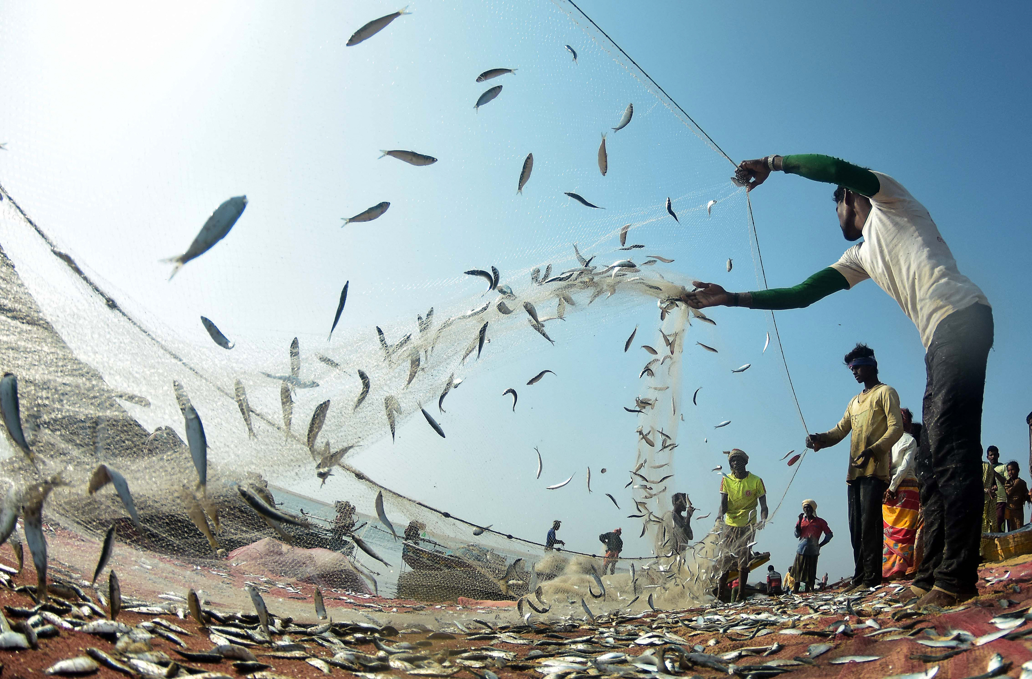 Fishermen Caught in India-Pakistan Conflict