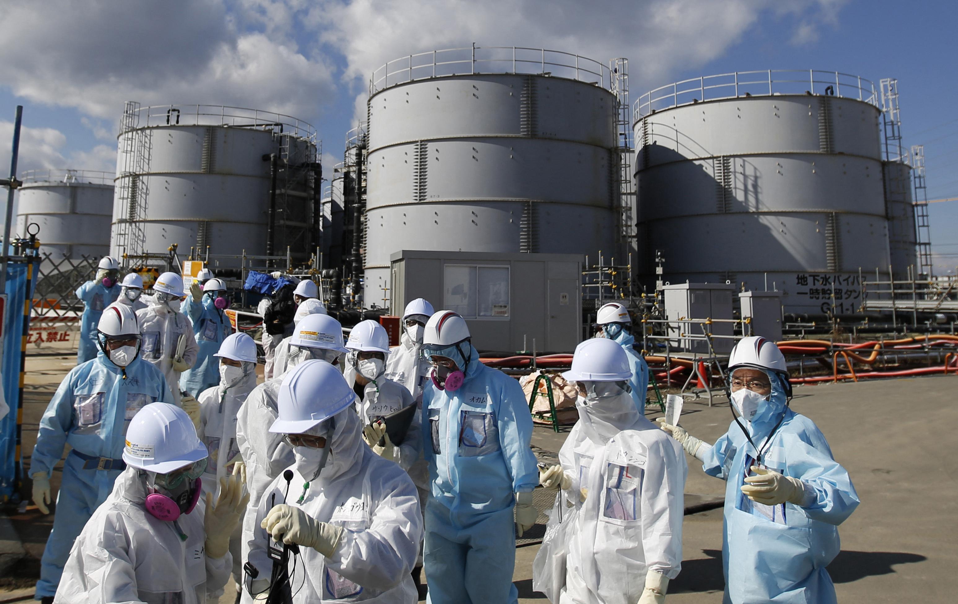 Fukushima, nuclear plant