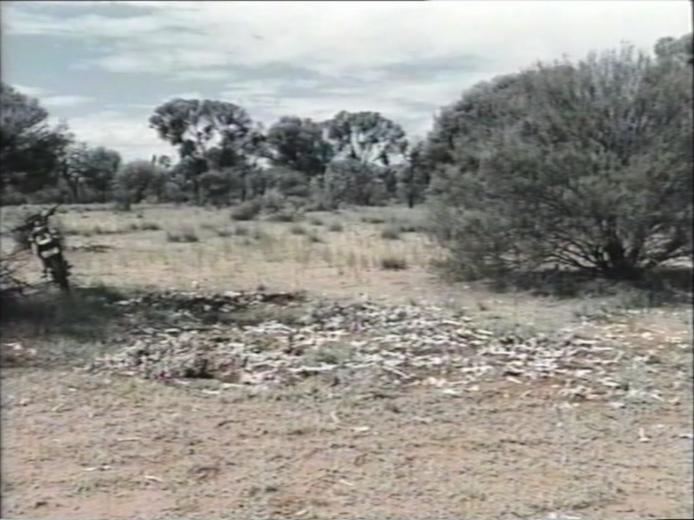 Lahan peternakan domba Australia yang dijadikan tempat memproduksi senjata pemusnah massal milik sekte kiamat Jepang
