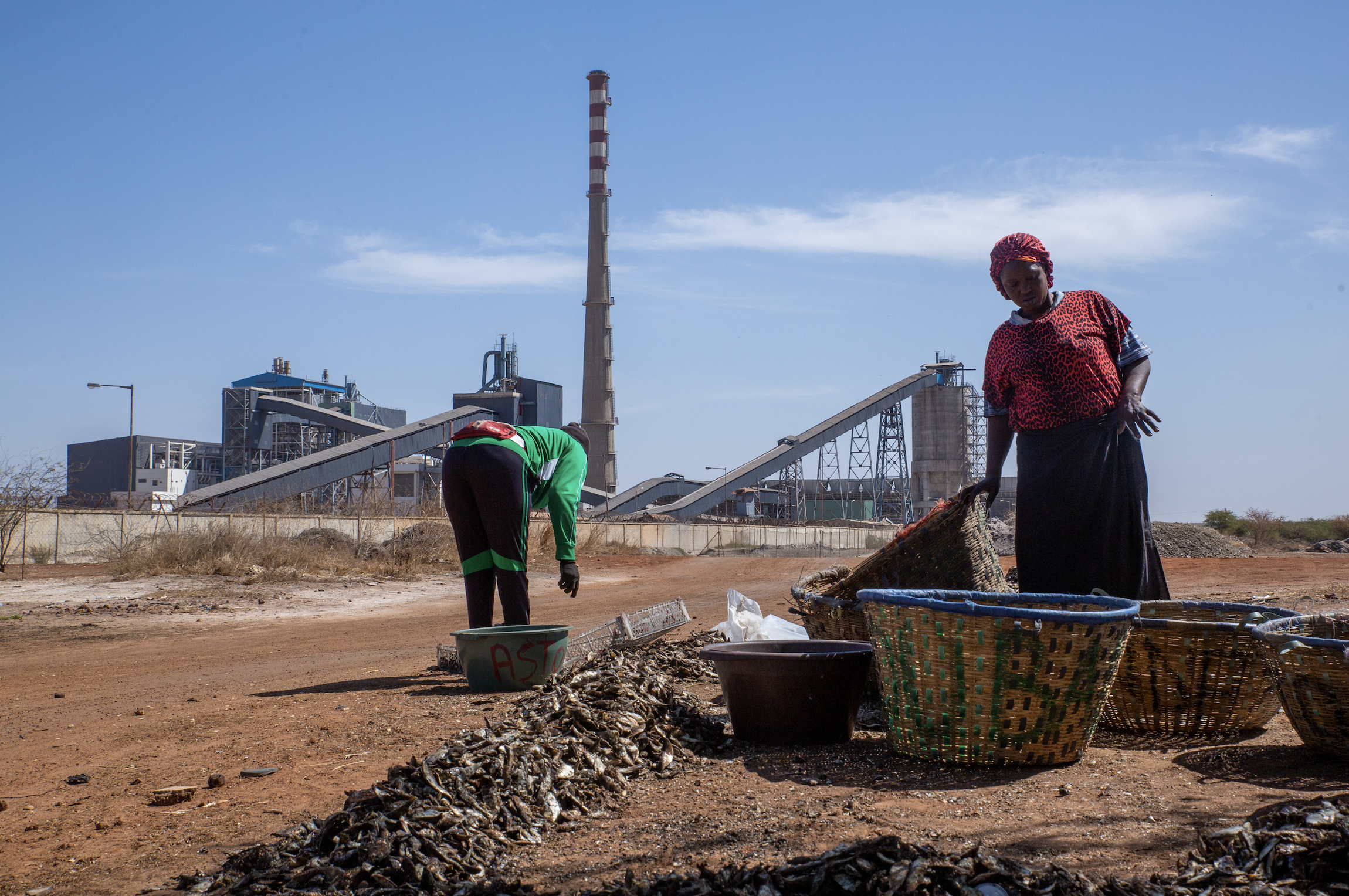 Women sort fish in front of the power plant.