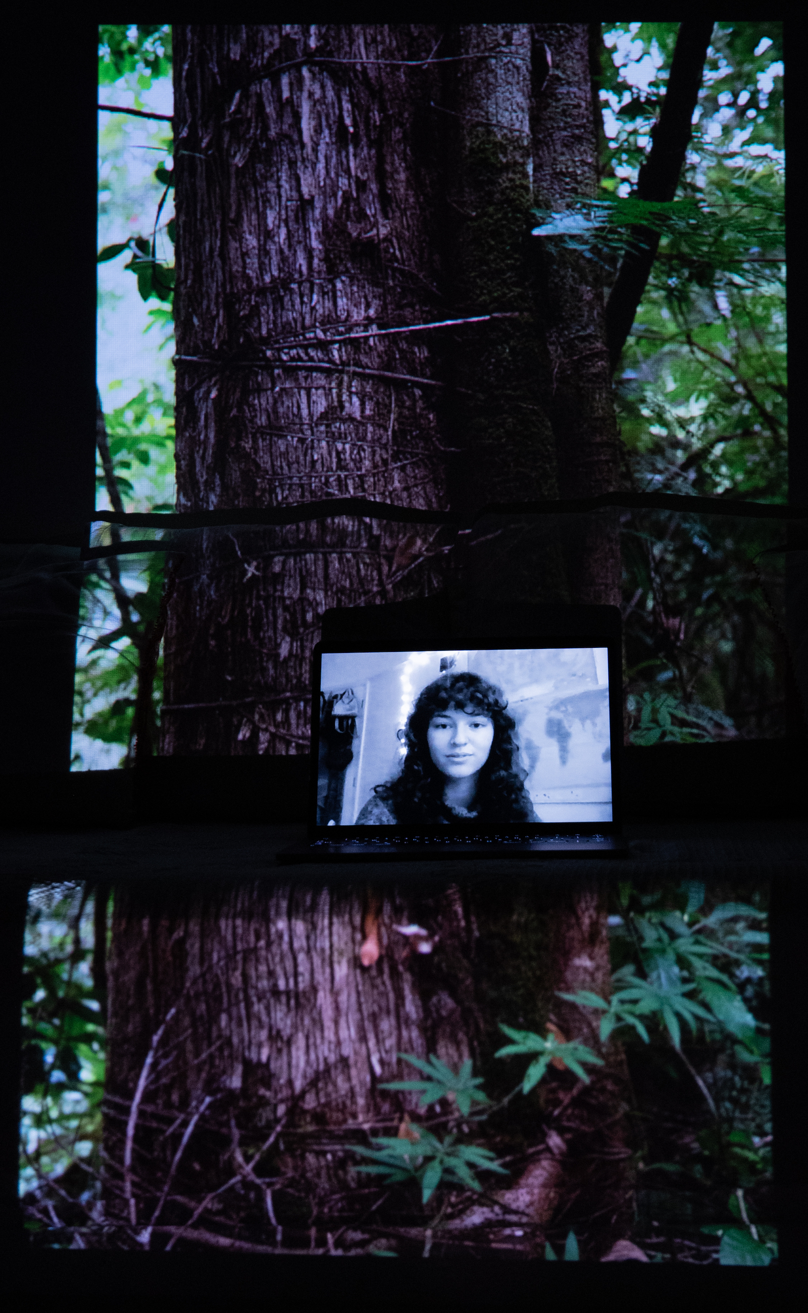 Talia Woodin, Extinction Rebellion Youth Coordinator. Projected Image: The Vine Embraced the Tree, Lacandon Jungle, Mexico, December 2020.