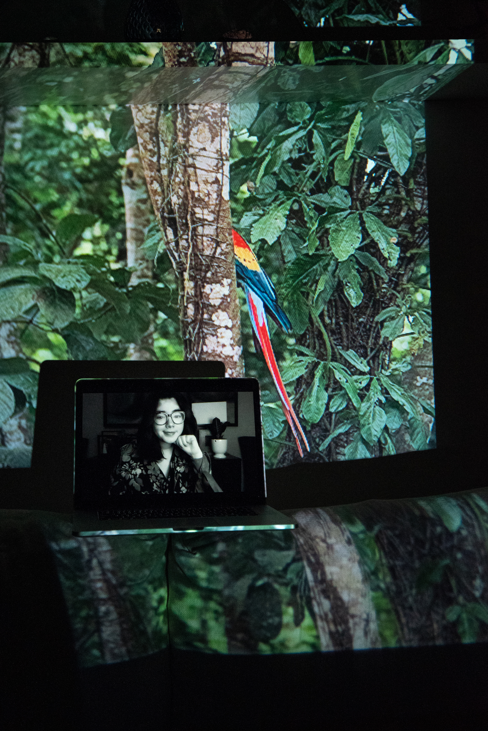 Andrea Villareal, Girl Up Campaign Regional Leader of Latinamerica and the Caribbean,  #EscazúAhora Mexico Co-Founder. Projected Image: La Guacamaya, Lacandon Jungle, Mexico, December 2020.