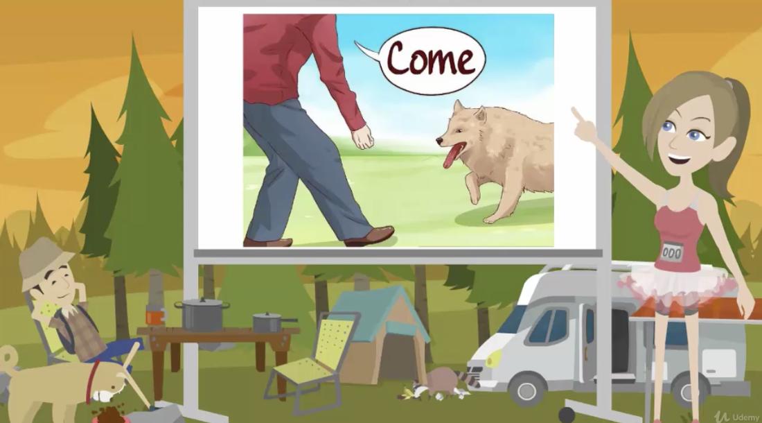 Screen Shot of pet psychic course